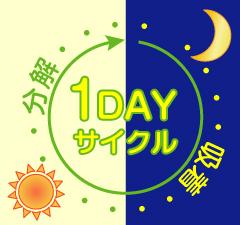 1日の光触媒効果